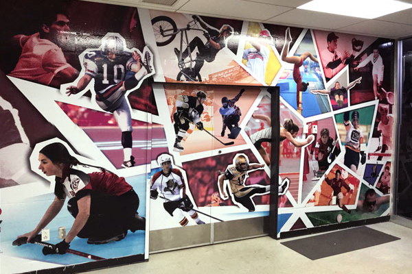 SportsWallDecals-Photo